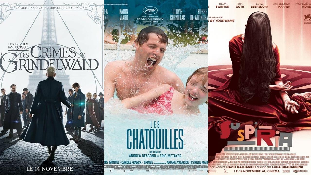 Les Animaux Fantastiques 2, Les Chatouilles, Suspiria : les films au cinéma cette semaine | Premiere.fr