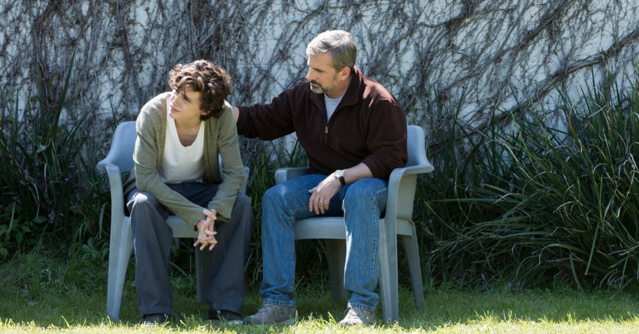 Read more about the article My beautiful boy: Steve Carell to the rescue of Timothée Chalamet [Critique]