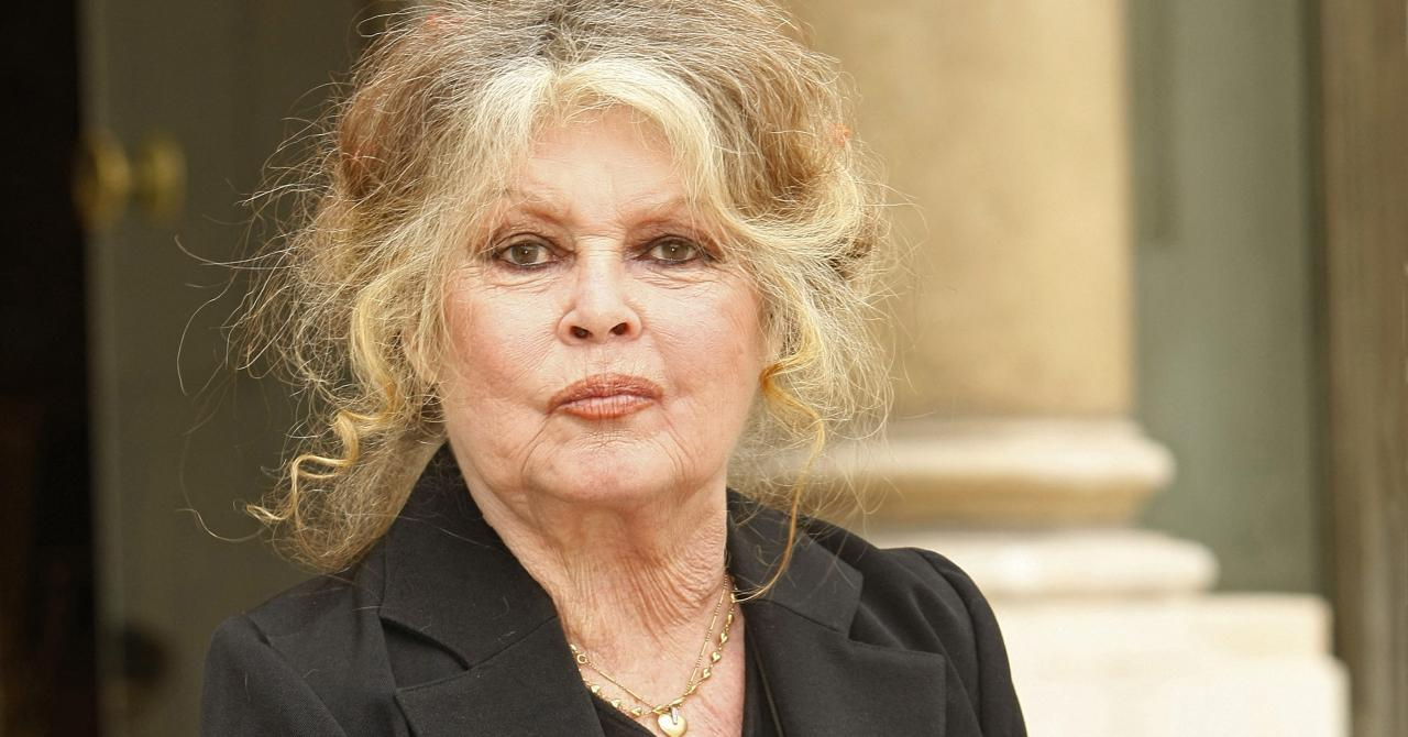 Brigitte Bardot : « Heureusement que Polanski existe et sauve le cinéma de sa médiocrité ! »