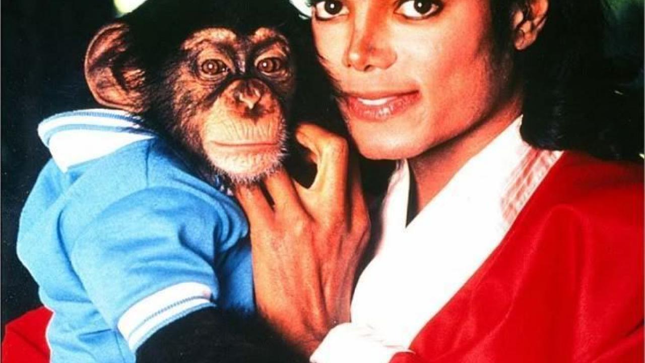Bubbles : Le film sur Michael Jackson et son chimpanzé ne ...