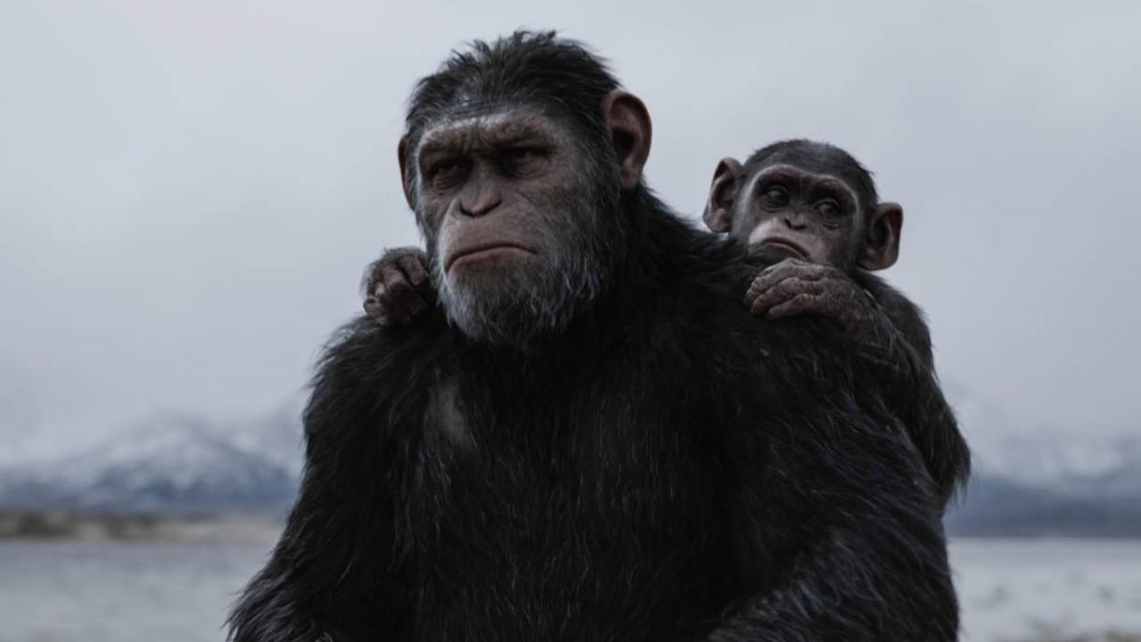 c sar est au c ur de l ultime bande annonce de la plan te des singes supr matie. Black Bedroom Furniture Sets. Home Design Ideas