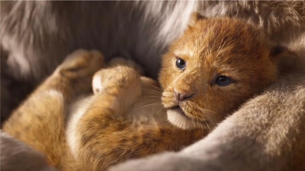 Le roi lion pourquoi ce n est pas un film en live action - Le roi lion les hyenes ...