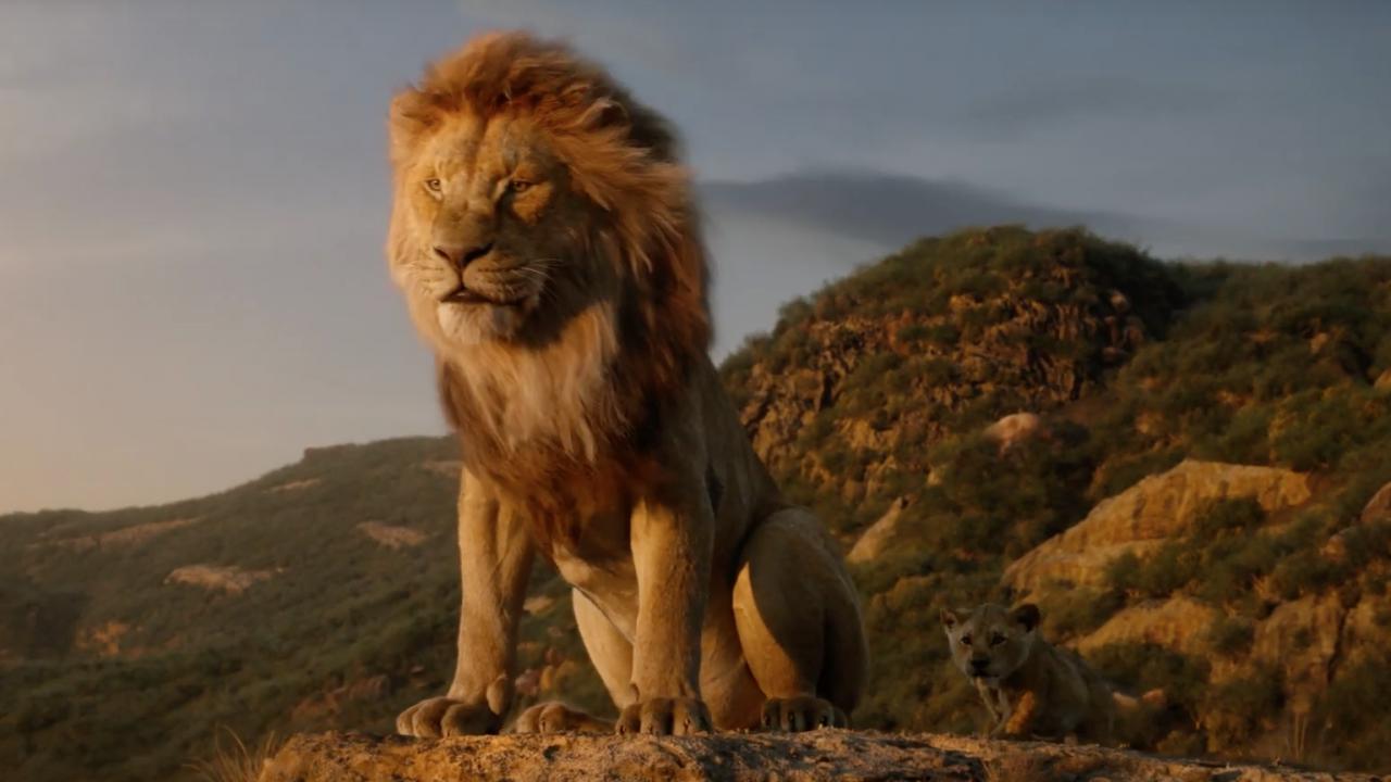Le Roi Lion Jon Favreau Dévoile L Unique Vrai Plan Du