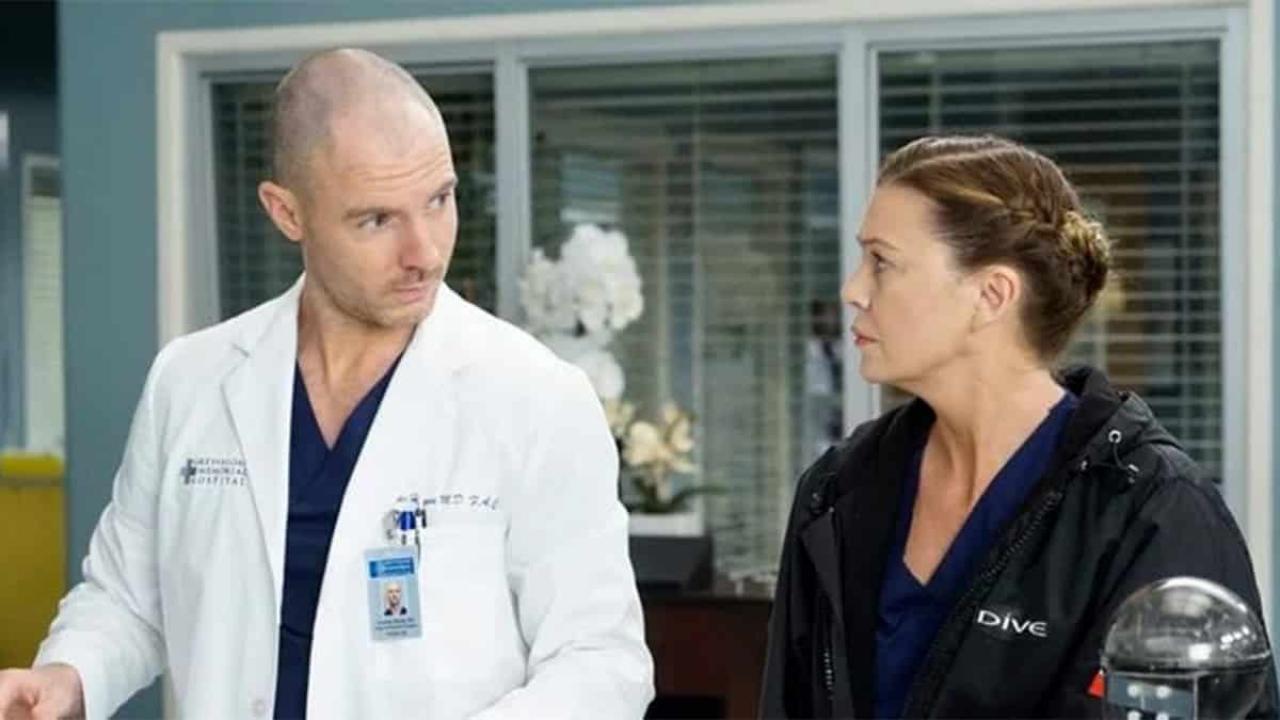 Grey's Anatomy Meredith McCormak