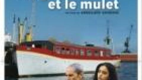 LE MULET ET TÉLÉCHARGER GRAINE GRATUITEMENT LA LE FILM