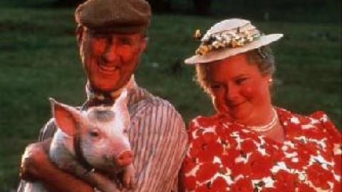 Babe le cochon dans la ville 1997 un film de george miller news date de - Papa cochon a la piscine ...