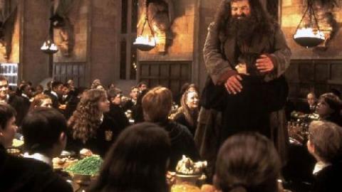 Harry potter et la chambre des secrets 2002 un film de chris columbus news - La chambre des secrets streaming ...