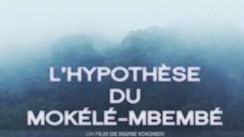 L'Hypothèse du Mokélé M'Bembé (2012), un film de Marie Voignier