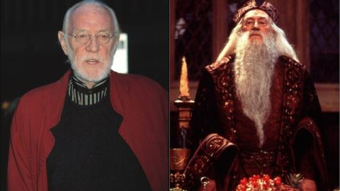 Richard Harris Albus Dumbledore