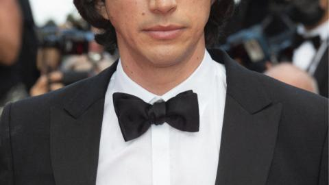 The opening night of the 2021 Cannes film festival: Adam Driver, casting Annette
