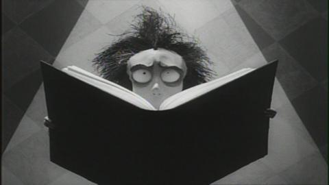 Vincent Molloy (Vincent, 1982)