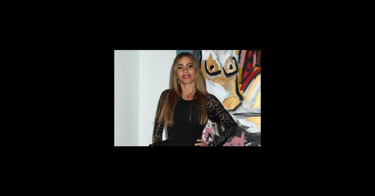 meilleure sélection 1bd02 5b505 PHOTOS - Sofia Vergara : mini-robe, dentelle et Louboutin ...