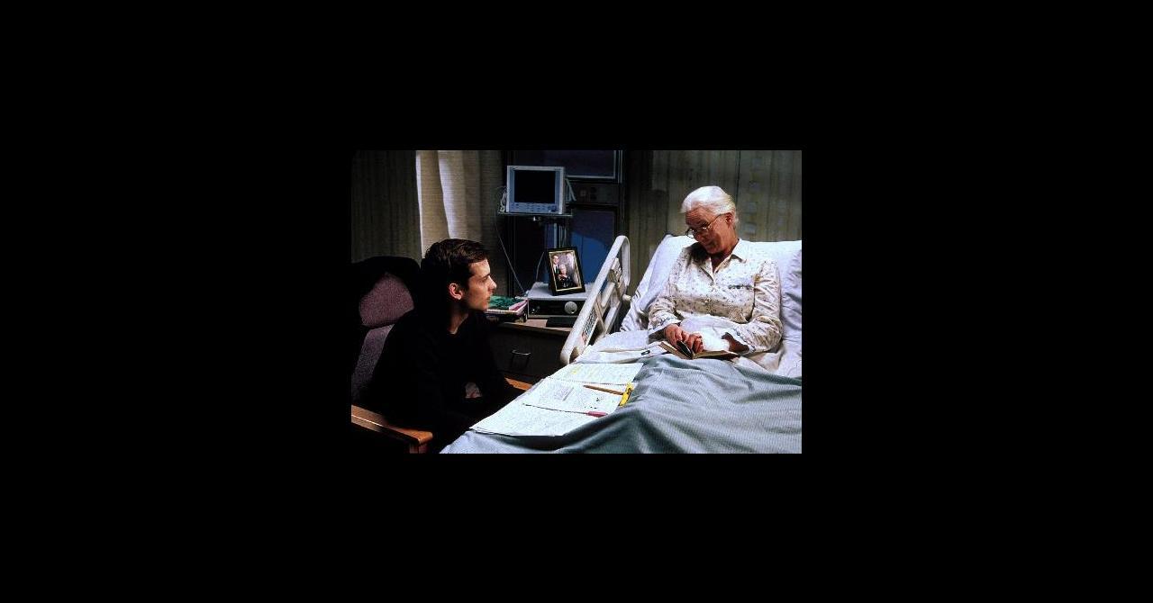 Spider Man 2002 Un Film De Sam Raimi Premiere Fr News Date