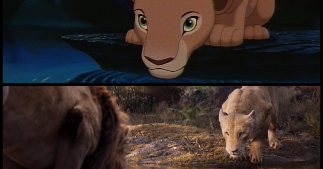 Le Roi Lion 1994 Vs 2019 Les Nouveaux Looks De Simba