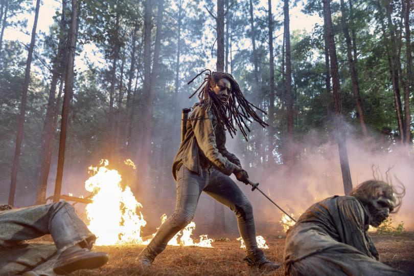 La série renouvelée pour une saison onze — The Walking Dead